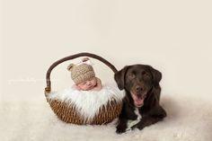 Newborn and Dog, Fairfield Connecticut Newborn Photographer | Jennifer Batz Photography