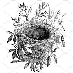 Bird Nest Illustration Vintage Ideas For 2019 Nest Images, Bird Silhouette, Graphics Fairy, Bird Illustration, Bird Drawings, Cute Birds, Bird Art, Artwork, Prints