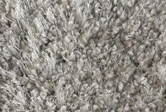 Stanton Carpet: Shaggy Majestic (Avant Garde collection) - color TBD with paint Wall Carpet, Bedroom Carpet, Rugs On Carpet, Carpets, Stanton Carpet, Kitchen And Bath Remodeling, Synthetic Rugs, Shaggy, The Ordinary