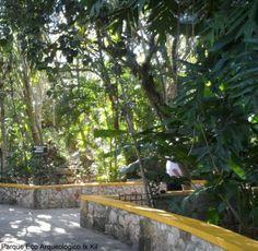 Parque Eco Arqueológico Ik Kil    foto : Cida Werneck
