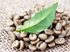 If you would like to try roasting green coffee beans at home, equip yourself with knowledge and the right tools to produce the best-roasted coffee beans. Easy Weight Loss, Healthy Weight Loss, How To Lose Weight Fast, Reduce Weight, Losing Weight, Organic Coffee Beans, Green Coffee Bean Extract, Herbal Extracts, Good Healthy Recipes