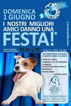 Il #canile di #Trento in Festa! 1/6/2014 dalle ore 14.00 #LegadelCane