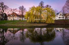 Mirror mirror . . . . . . .  #omd #em1 #olympus #olympusomd  #instagood #impression #olympuscamera #hildesheim #bestofhildesheim #urban #stadt #blauestunde #colors #blue #green #red #horizon #trees #pond #skyline #hike #travel #horizon #sky #skyline #skylovers #nightfall #germany #niedersachsen #lowersaxony @bestofhildesheim