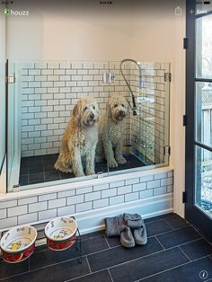 Dog washing station