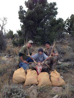 Elk Hunting in Higher Elevations. Triumphs and Follies Hunting Guide, Elk Hunting, Deer, Couple Photos, Couple Shots, Couple Photography, Couple Pictures, Reindeer, Deer Hunting
