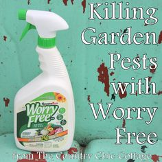 [OVER] Killing Garden Pests plus a $25 Giveaway