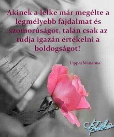 Splash of Pink - Color Splash ~ Pink, Gray Splash Photography, Black And White Photography, Pink Color, Color Pop, Gris Rose, Love Rose, Black And White Pictures, Black White, Beautiful Roses
