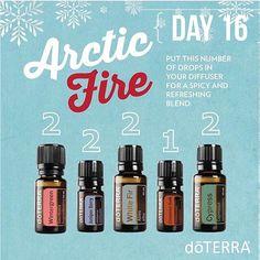 Arctic Fire diffuser blend: Day 16 #doterra #essentialoils #wellnesslifestylewitheos #etapia_kwan  #whitefir #wintergreen #juniperberry #cinnamonbark #cypress