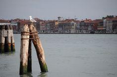 ヴェネチア 2010.09.07