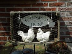 kijkkast - fruitkist met kip en haan achter gaas (homedecoratie) ((action))