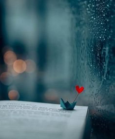 30 Romantic Valentine's Day Wallpaper Cool Pictures For Wallpaper, Images Wallpaper, Cute Wallpaper Backgrounds, Love Wallpaper, Pretty Wallpapers, Iphone Wallpaper, Miniature Photography, Cute Photography, Creative Photography