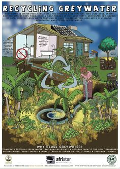 Great for the upcoming water unit: Recycling greywater - downloadable poster at http://afristarfoundation.org/portfolio/posters/
