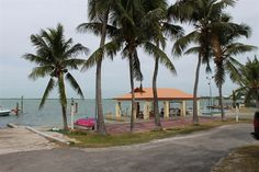 Riptide Carefree RV Resort in Key Largo, Florida - Situated at mile marker 97.5, Riptide has a boat launch & docks ready for spending days on the water. Dive capital of the world, this cozy park has 39 full-hookup sites with many fun amenities & convenient services.