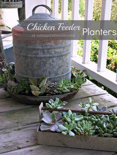 Chicken Feeder Planters #diy