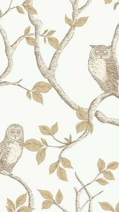 FINE DECOR Woodland Owls Wallpaper Natural Cream, and Gold. Shop similar designs at ilovewallpaper.co.uk #ilovewallpaper #Home #Butterfly #Birds #Wallpaper Owl Wallpaper, Butterfly Wallpaper, Butterfly Print, Beautiful Owl, Tree Patterns, Tree Designs, Cream And Gold, Designer Wallpaper, Owls