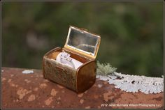 Antique ring box...LOVE it.