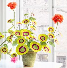 Potted Paper Geranium #homedecor #flowers