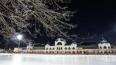 Városligeti Műjégpálya - Budapest Ice rink