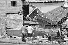 terremoto 2014