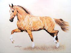 #pastelpencil #horsedraw #equineart
