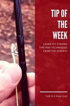fly fishing tips and techniques for beginners Fly Fishing Tips, Best Fishing, Fishing Lures, Fishing Basics, Ice Fishing, Trout Fishing, Saltwater Fishing, Fly Casting, Fishing For Beginners