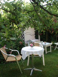 Tea under the roses. Outdoor Furniture Sets, Outdoor Decor, Shortbread, Roses, Tea, Home Decor, Lawn And Garden, Decoration Home, Pink