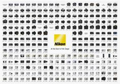 Michael Daniel Ho - The Wildlife Ho-tographer: Canon and Nikon Posters - Decades Of Camera Evolution