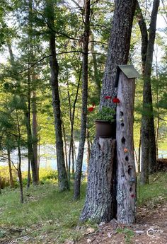 How I Made A Tree Trunk Bird House - Rustic Crafts & Chic Decor Old Cabinets, Wooden Cabinets, Welding Projects, Easy Projects, Fire Pit Area, Steel Sheet, Rustic Crafts, Roofing Materials, Stone Crafts