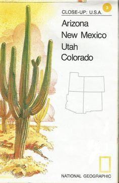 Vintage National Geographic Map Arizona New Mexico Colorado Utah Close-Up USA