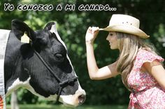 "Our daily #Spanish #Idiom for today is:  ""Yo conozco mi ganado"" / ""I know my cattle""  An expression used when you know someone or something really well and know what to expect, without risking any surprises.  #SpanishExpressions #Frases #Español #Cattle #Knowing"