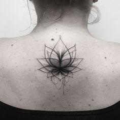 Lotus flower by Sara Reichardt