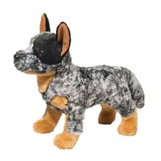 BOLT AUS CATTLE DOG* picture