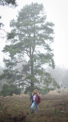 Nature fog vintage 90's