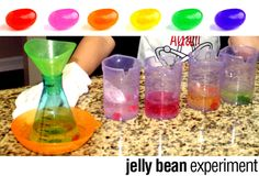 Jelly Bean Science and Math  Fun with Little Learners conducted a colorful experiment that demonstrates the effects of carbonated soda on jelly beans. An experiment you can taste! Click here to see the full tutorial!