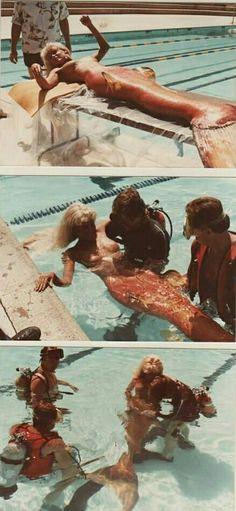 Diy Mermaid Tail, Mermaid Names, Silicone Mermaid Tails, Siren Mermaid, Mermaid Art, Splash Movie, Realistic Mermaid, H2o Mermaids, Daryl Hannah