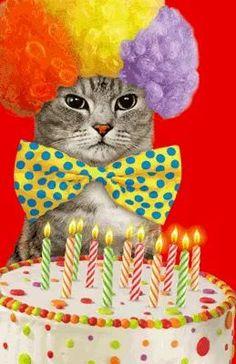 New Funny Happy Birthday Cat 44 Ideas Happy Birthday Printable, Happy Birthday Pictures, Happy Birthday Sister, Happy Birthday Funny, Cat Birthday, Animal Birthday, Funny Happy, Birthday Wishes Cards, Happy Birthday Messages