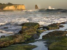 Four Mile Beach | Santa Cruz | California