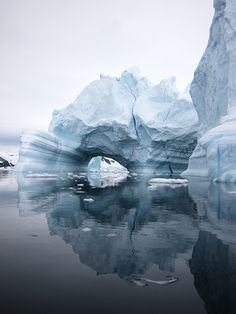 Antartica  Take the time to appreciate the beauty in everything and everyone. Especially in yourself.