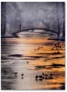 Trademark Global Cristian Andreescu 'Frozen Lake' Canvas Art - 24 x 18 x 2