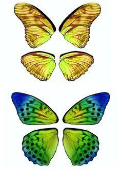 Dibujos y Plantillas para imprimir: Alas mariposas para hadas