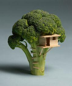 Casa de...brócolis!