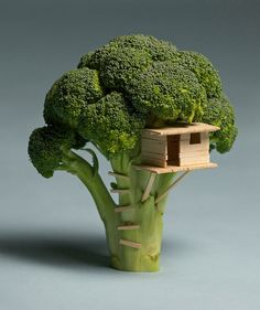 I always thought broccoli looked too much like miniature trees!