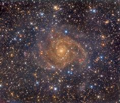 Hidden Galaxy IC 342 - Similar in size to large bright spiral galaxies in our neighborhood IC 342 is a mere 10 million light-years distant in the long-necked northern constellation Camelopardalis. A sprawling island universe IC 342 would otherwise be a prominent galaxy in our night sky but it is hidden from clear view and only glimpsed through the veil of stars gas and dust clouds along the plane of our own Milky Way galaxy. Even though IC 342's light is dimmed by intervening cosmic clouds…