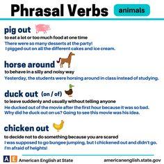 Phrasal Verbs: animals