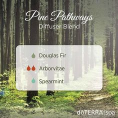 Diffusing the Pine Pathways blend is like walking along the fragrant, wooded trail of a peaceful forest. As Douglas Fir, Arborvitae, and Spearmint come together, it will enliven your senses, transporting you to a quiet, secluded mountainside. We can't wait to diffuse this outdoor medley in the dōTERRA® Spa all week long. #doterradiffuserrecipes #doterraspa
