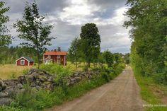 Vy från Småland