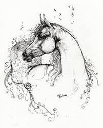 horses drawings