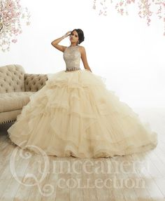 Shop for House of Wu Quince Dresses at ABC Fashion. These beautiful 2020 House of Wu ball gowns from the Quinceanera Collection are perfect for any Sweet 15 and Sweet 16 party! 2 Piece Quinceanera Dresses, Champagne Quinceanera Dresses, Quinceanera Party, Wedding Dresses, Quinceanera Decorations, Quince Decorations, Wedding Flowers, Sweet 16 Dresses, 15 Dresses