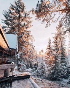 Winter and Christmas aesthetic Winter Szenen, Winter Magic, Winter Time, Winter Christmas, Christmas Time, Winter Travel, Snow Travel, Cabin Christmas, Hello Winter
