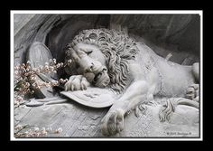 Lion Monument in Lucerne, Switzerland. The beauty of this statue, both tragic and strikingly amazing, has stuck with me for years!